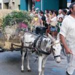 Carro arrastrado por una burrita, se utiliza cuando queremos representar un traslado de enseres o la venta de productos en un mercado.