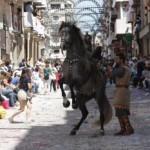 Espléndido trabajo de doma a píe con un caballo